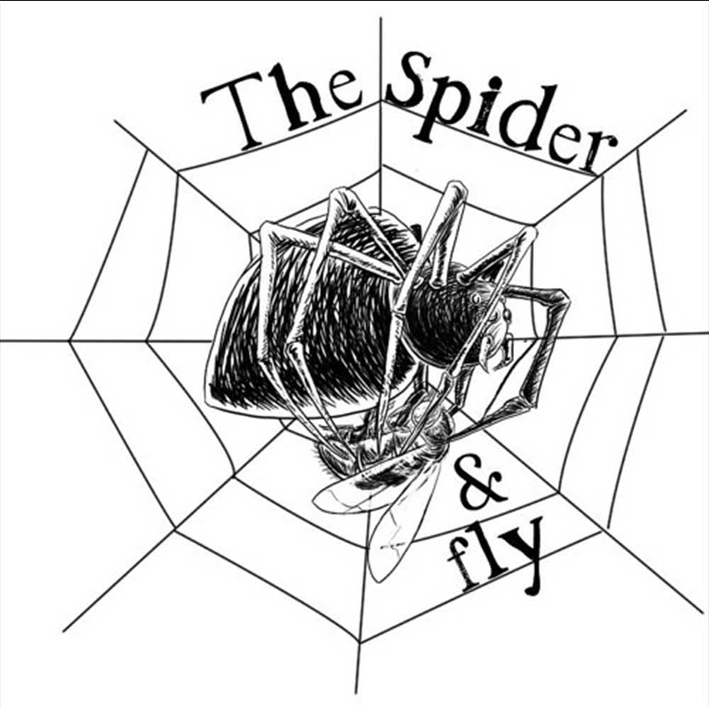 Spider and Fly Store